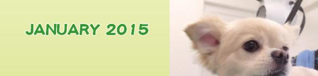 2015年1月のおともだち