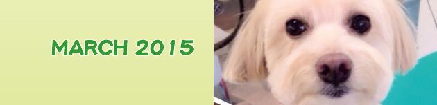 2015年3月のおともだち