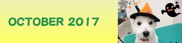 2017年10月のおともだち