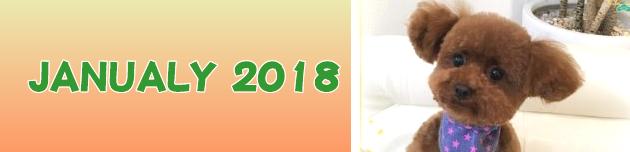 2018年1月のおともだち