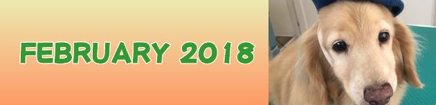 2018年2月のおともだち