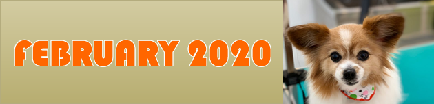 2020年2月のおともだち