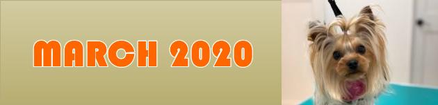 2020年3月のおともだち