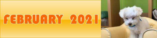 2021年2月のおともだち