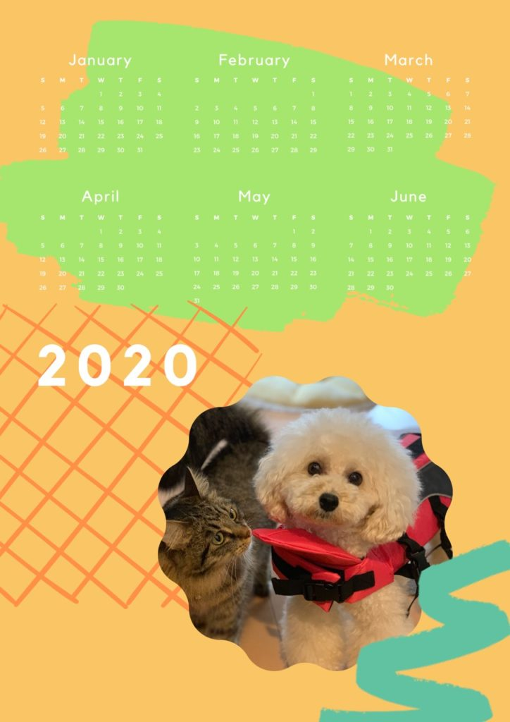 amie Calendar2019